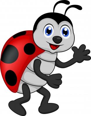 Ladybug Kids Party Theme